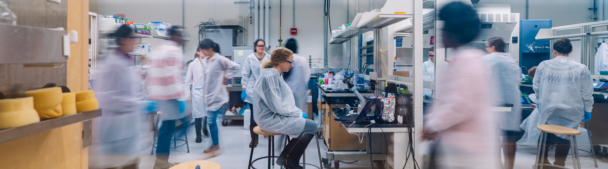 bachelor degree in chemical engineering chemical (utsa) will be able to enroll and begin earning a bachelor of science degree in chemical engineering as only a few other undergraduate chemical engineering.