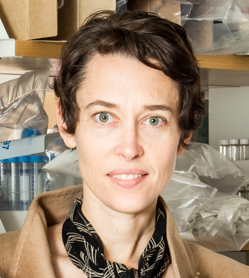 Beyond building tissues: the future of regenerative medicine